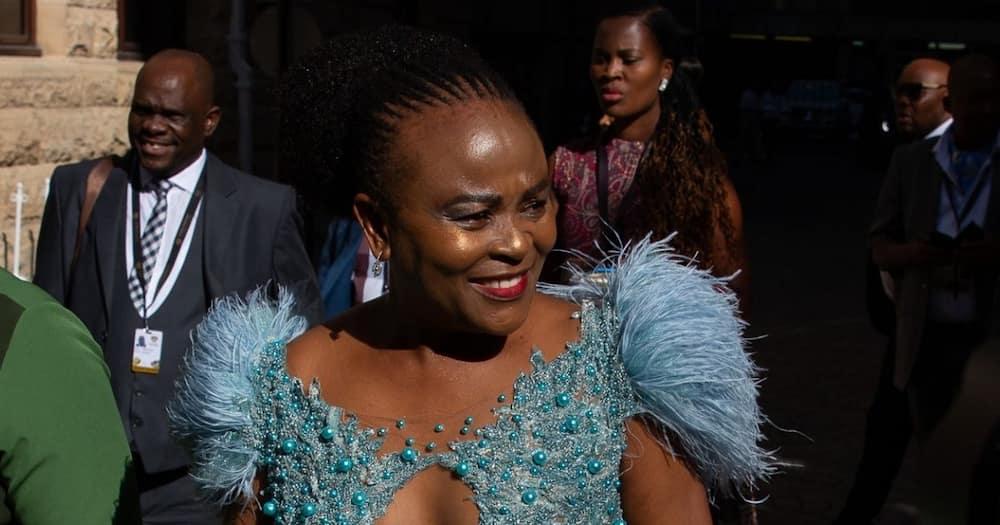 public protector, Busisiwe Mkhwebane, case postponed, 29 September