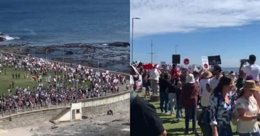 600 Illegal Marchers, Anti-Vaxxers, Charged, Cape Town, Police, Covid 19