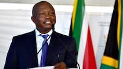 DA wants David Mabuza to step down amid allegations of Eskom donation