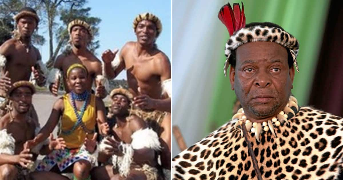 Local man suggests isiZulu be made official language of Mzansi