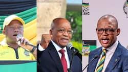 KZN Premier Sihle Zikalala and Magashule throw their weight behind Jacob Zuma