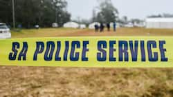 Police shoot dead 6 illegal mineshaft workers in North West