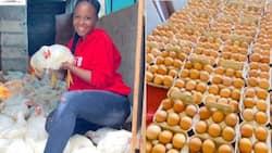 """Big ups"": Young female farmer, Sne Ngubane, inspires youth with hustle, Mzansi celebrates her"