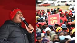 """Malema promises to pay unemployed students a """"graduate allowance"""""""
