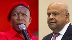 EFF vs Gordhan: Hefty fines and suspension recommended for some MPs