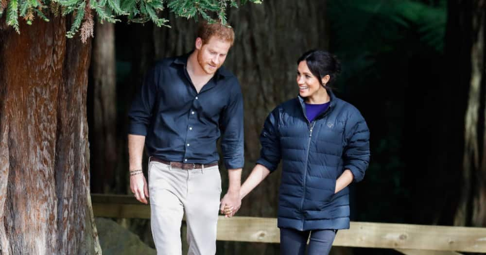 Meghan Markle, 'Never wanted fame', Prince Harry, Andrew Morton