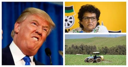ANC calls Donald Trump's tweet about South Africa outrageous and hurtful