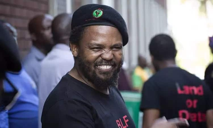 BLF vs AfriForum: 5 monumental reactions to the video that caused an online stir