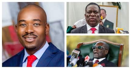 Meet Nelson Chamisa, 40, young but promising Zimbabwean presidential candidate