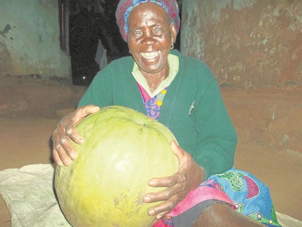 Gogo Nwa-mdunwazi Gudu has been a farmer for over 40 years. Source: Daily Sun/Mzamani Mathye