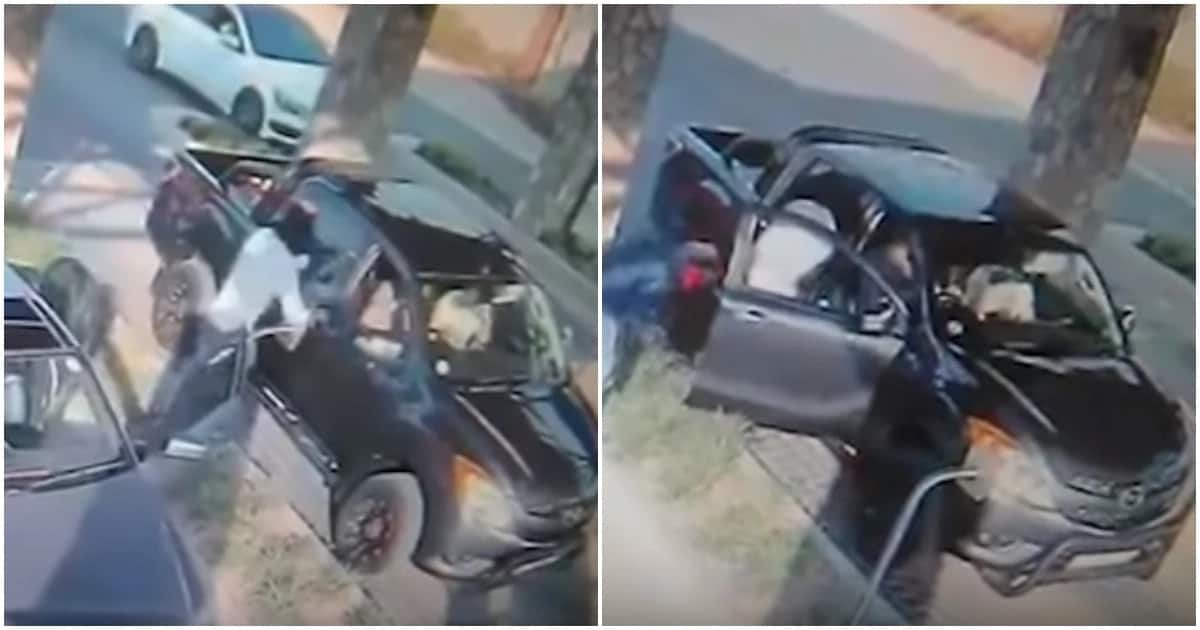 Video shows it takes armed robbers 30 seconds to steal from an unsuspecting motorist