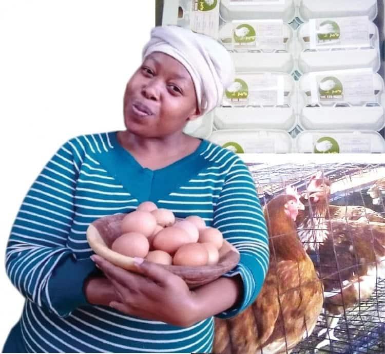 Malesiba Mabitsela made a cracking success as an egg-cellent entrepreneur