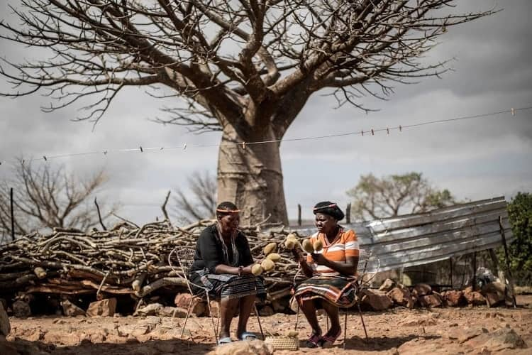 Two women in Limpopo women pictured next to a baobab tree. Source: TimesLIVE