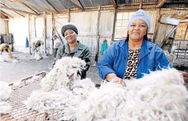 Friendship goals: 2 Besties turn looted farm into a commercial empire