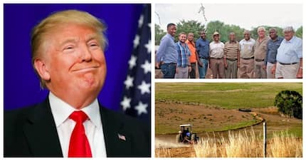 SA farmers unite in call on Trump to butt out of land debate