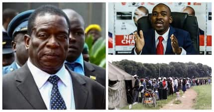 Zimbabwe elections: Meet the 23 candidates running for Zim's presidential seat