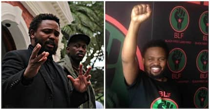 Free livestock and super low VAT: 11 funny reactions to BLF's 2019 election win