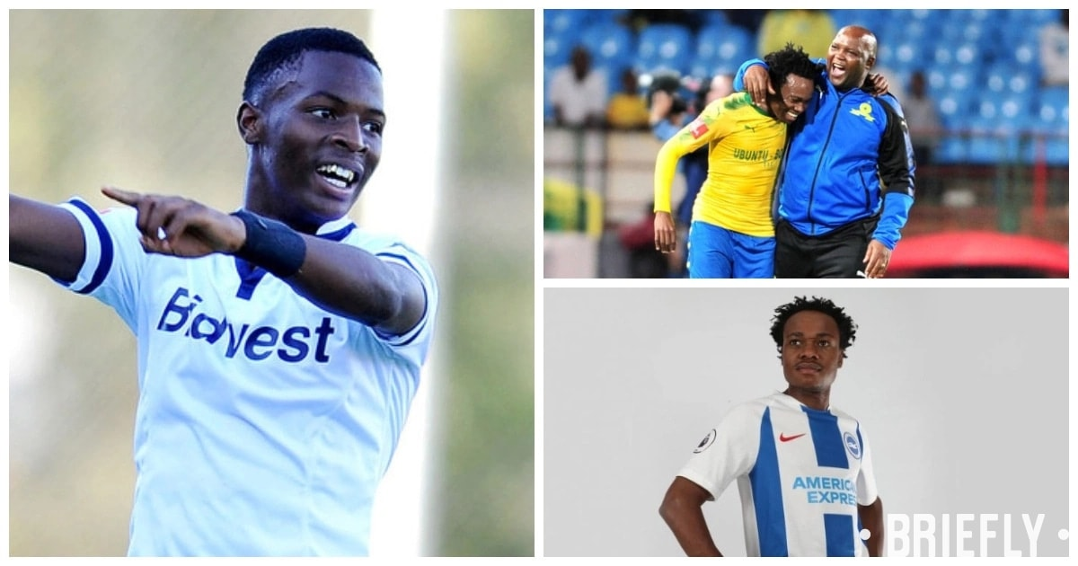 Percy Tau believes loan from Brighton to Belgium is brilliant