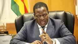 Bad news for white farmers in Zimbabwe as Mnangagwa refuses to return seized land