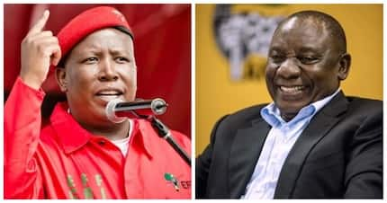 Do the EFF and ANC believe blacks need a chief to look after land?