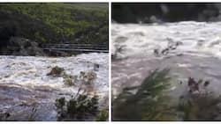"The Cape ""Day Zero"" poster child dam rises 12% in just days"