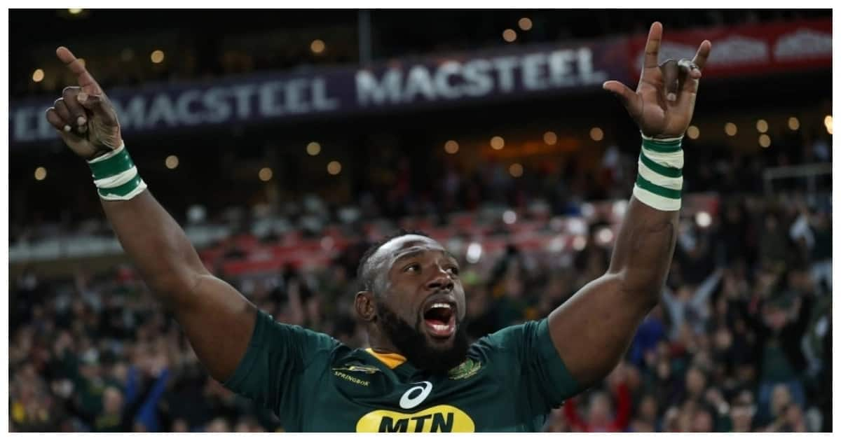 The Beast could end up the most decorated Springbok of all time
