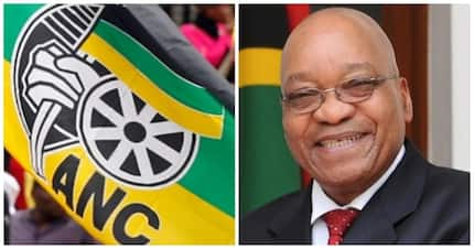 Opinion: Zuma seems about to destroy the ANC