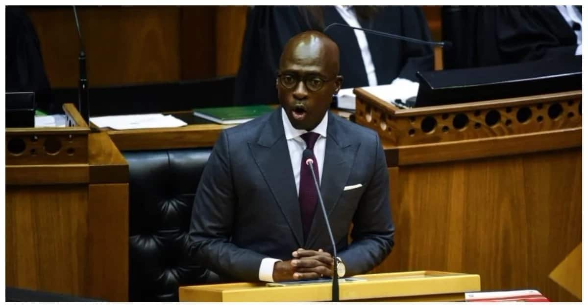 Opposition: Protect the poorest from Gigaba's budget changes