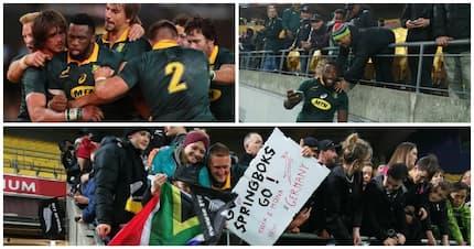 The Springboks beat the All Blacks and left SA with tears of joy