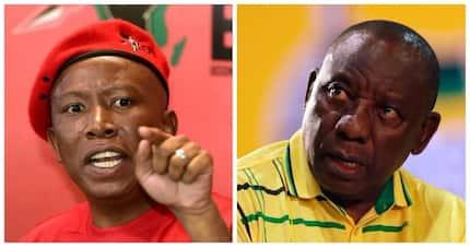 Julius Malema throws shade at Cyril Ramaphosa, but it backfires