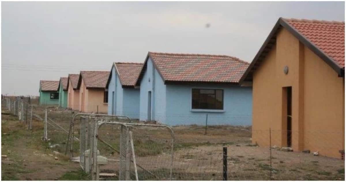 DA lashes out against David Mabuza over Mpumalanga housing