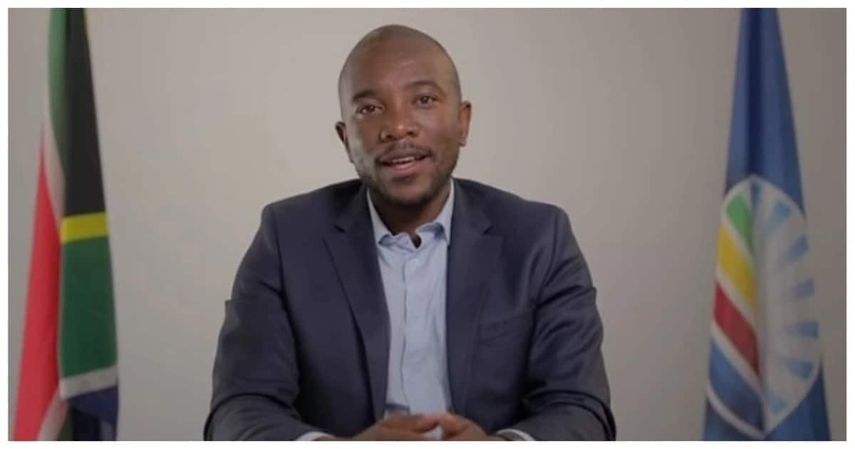 There's a DA video the SABC 'refused' to show to South Africans