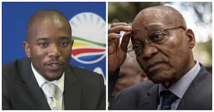 Maimane says Parliament needs to start impeachment proceedings against Zuma as soon as possible