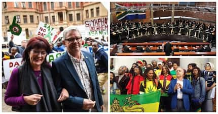 ConCourt dagga ruling: Private use is decriminalised as current act declared unconstitutional