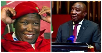 Ramaphosa must leave politics and return to business, says Malema