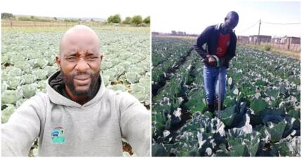 28-year-old black farmer is passionate about farming but needs support
