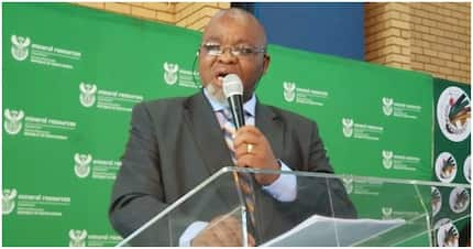 Twitter resurrects photo of Gwede Mantashe's oversized suit and it's hilarious