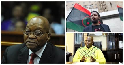 KZN ANC avoids questions about Jacob Zuma's apparent backing of BLF