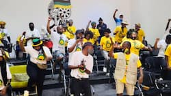 'Hands off Ace Magashule': ANCYL division marches to Luthuli House