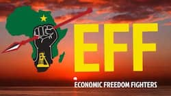 Social media turns red as EFF celebrates 8th anniversary, Mzansi reacts