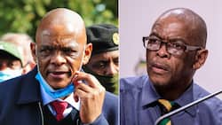 Ace Magashule considering taking fight against the ANC to Supreme Court of Appeal