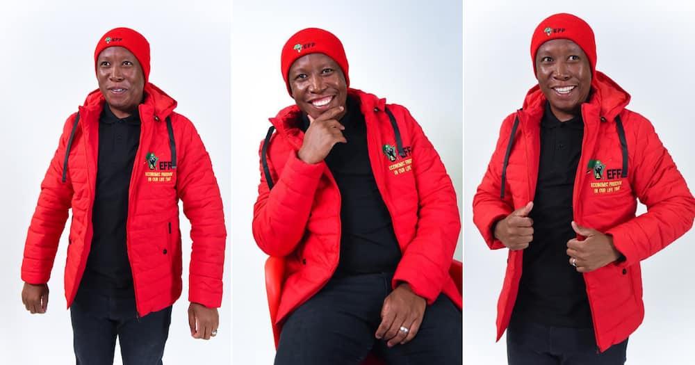 Julius Malema comes at Herman Mashaba: I want to check something