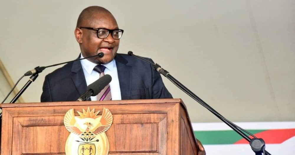 Law mooted to ban foreigners running businesses in Gauteng townships