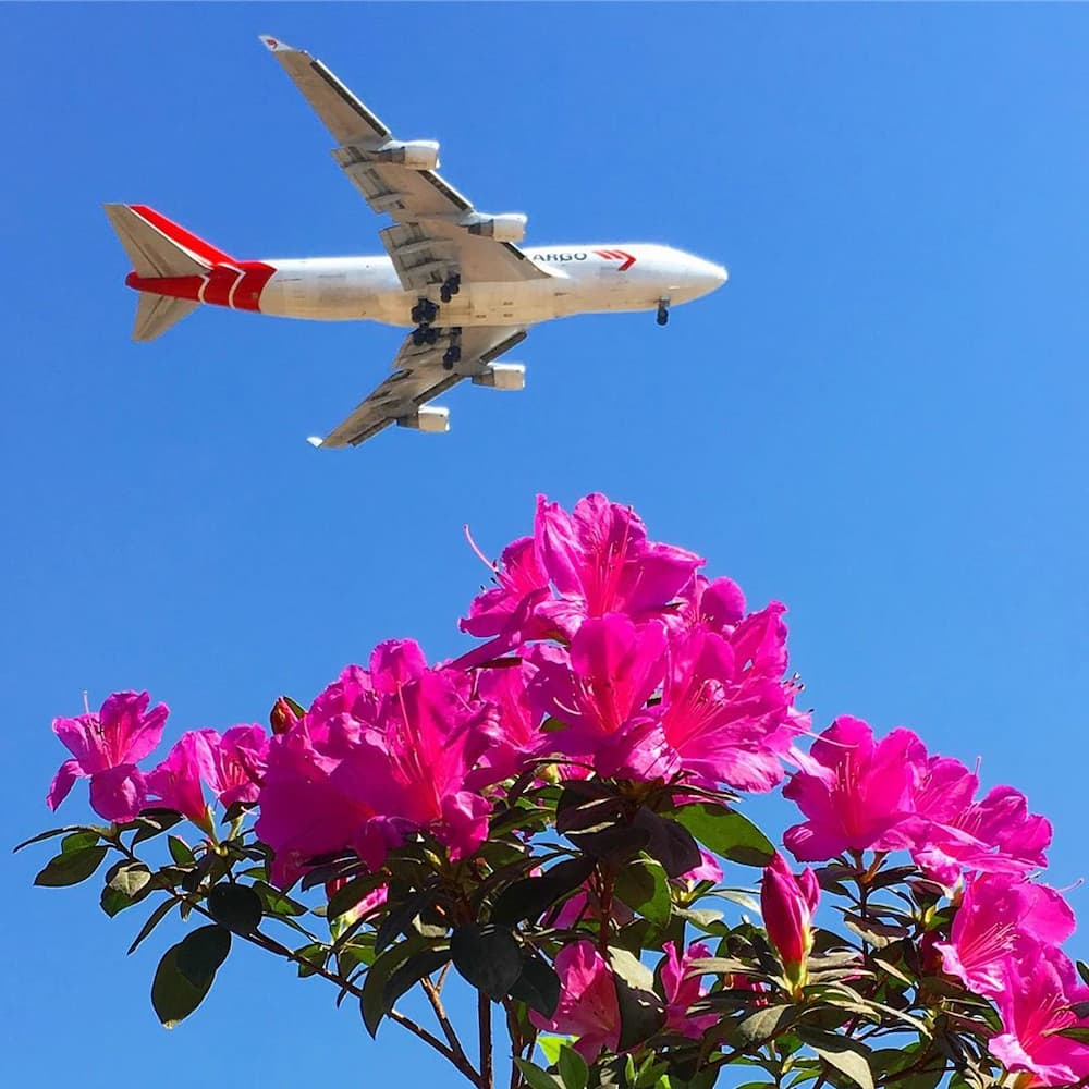 list of domestic and international airports in South Africa