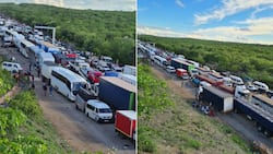 Beitbridge border: Home Affairs encourages truck drivers to avoid post