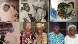 Couple celebrates 60th wedding anniversary, many are inspired as cute photos light up social media
