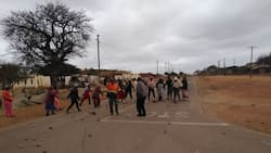 78-year-old Limpopo grandmother walks 2km daily to beg for water