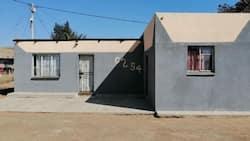 Mandela Day: Generous man renovates house for free, touches Mzansi