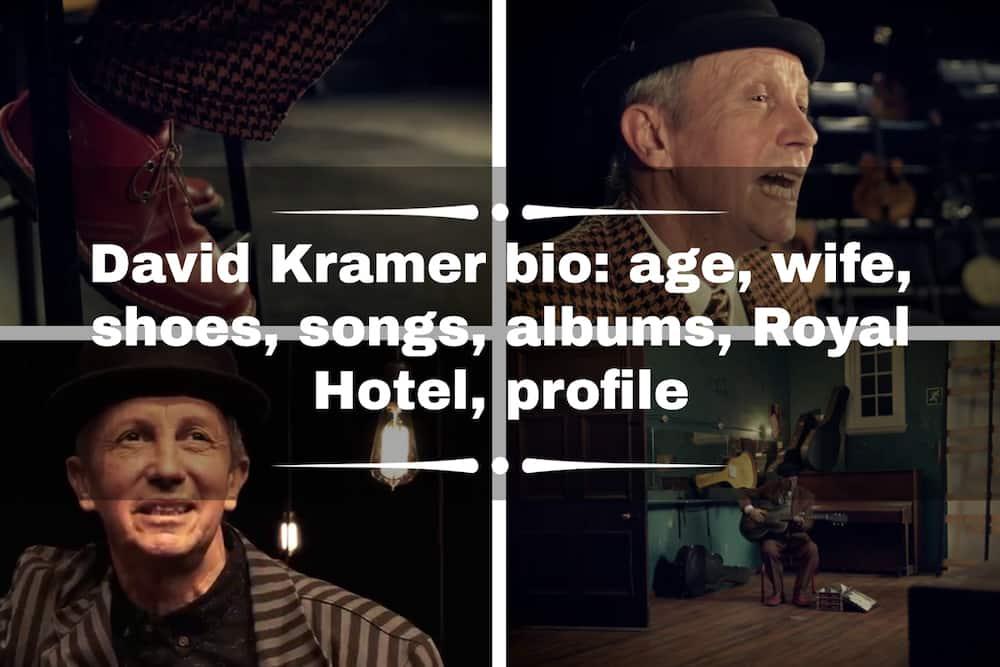 David Kramer bio