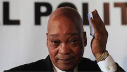 Zuma avoided potential loss of lives by submitting to 'rule of law losing its power'